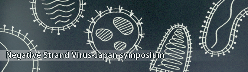 Negative Strand Virus-Japan symposium